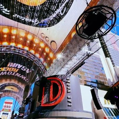 The D Hotel